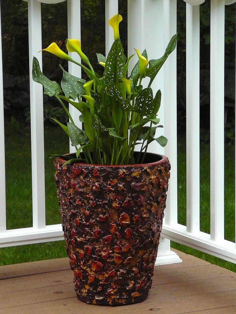 Deck & planters (1)