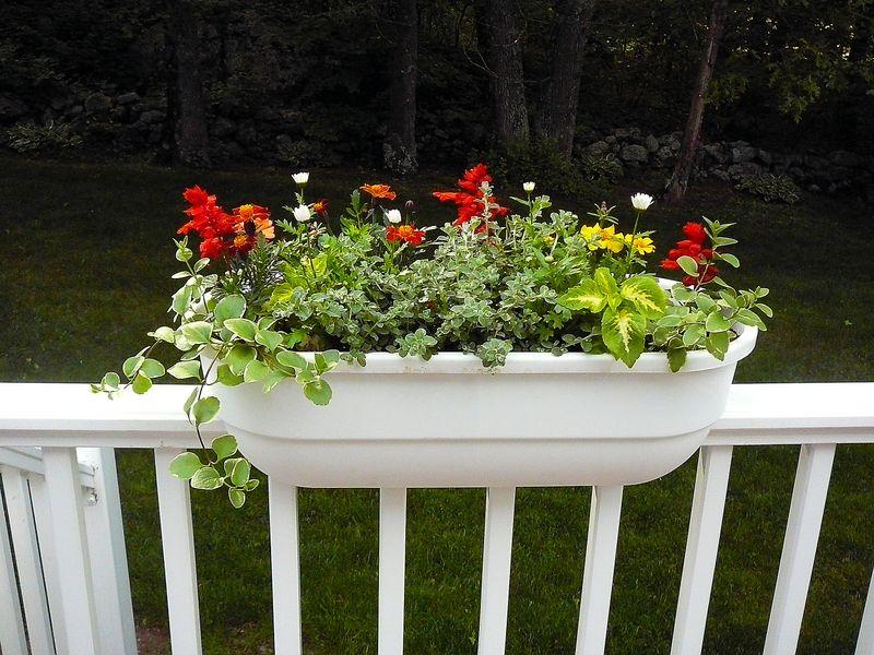 Deck & planters (2)